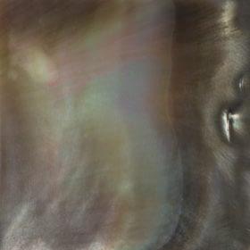 SOLID POLISHED SHELLSblack lip solid polished shells 280x280 1 Madreperla
