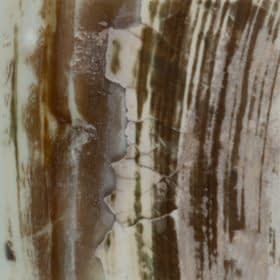 SOLID RAW SHELLSkabibe solid raw shells 280x280 1 Madreperla